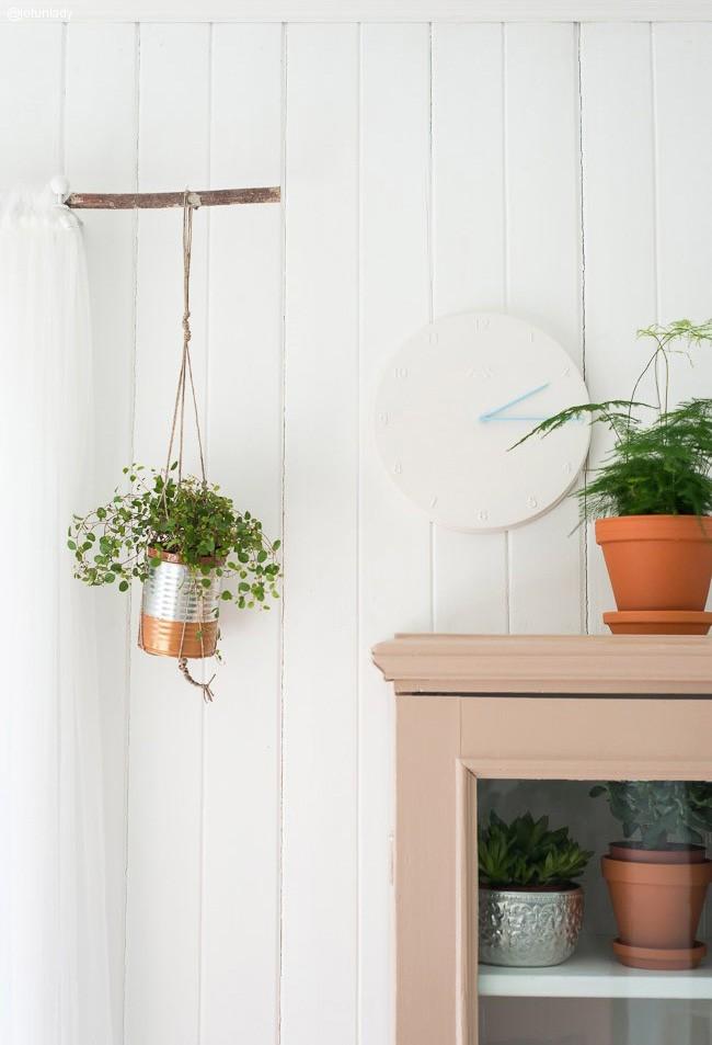 Los beneficios de las plantas como elemento decorativo